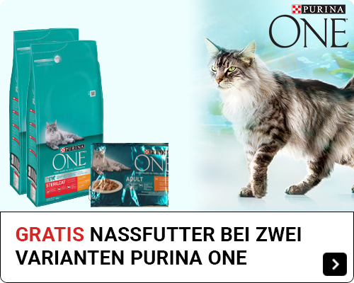 Purina One free pouch