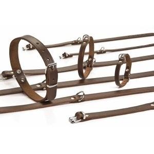 Leren Halsbanden 27 cm voor de hond