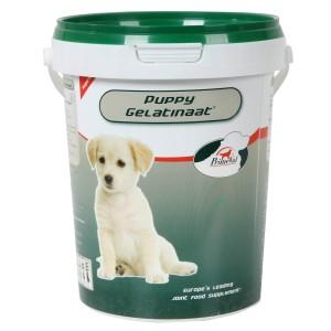 Primeval Puppy Gelatinate für Hunde