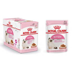Royal Canin Kitten Katzenfutter x12