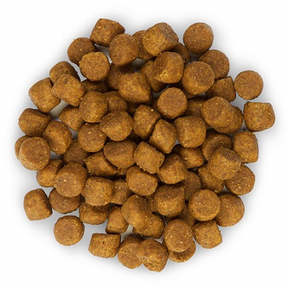 Hill's Puppy Healthy Development Lamm & Reis Hundefutter