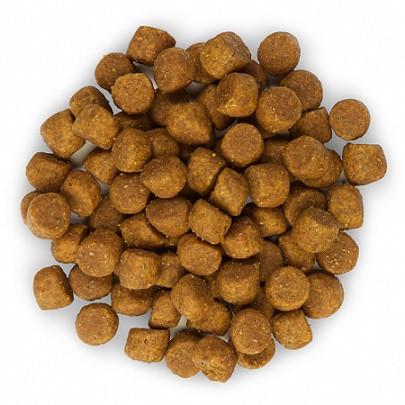 Hill's Puppy Healthy Development Lamm & Reis Hundefutter