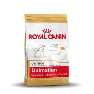 Royal Canin Junior Dalmatiner Hundefutter