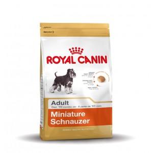 Royal Canin Adult Zwergschnauzer Hundefutter