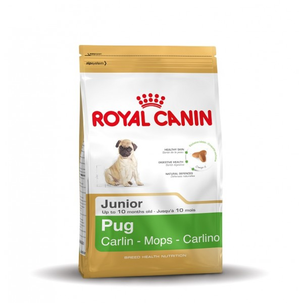 royal canin junior mops hundefutter. Black Bedroom Furniture Sets. Home Design Ideas