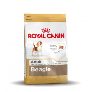 Royal Canin Adult Beagle Hundefutter