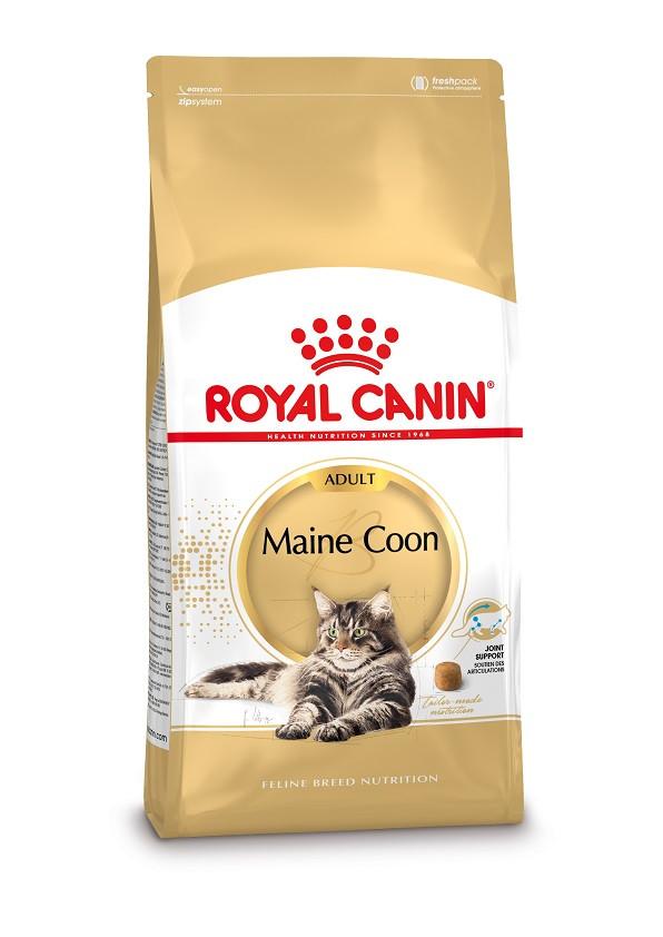 Royal Canin Adult Maine Coon Katzenfutter