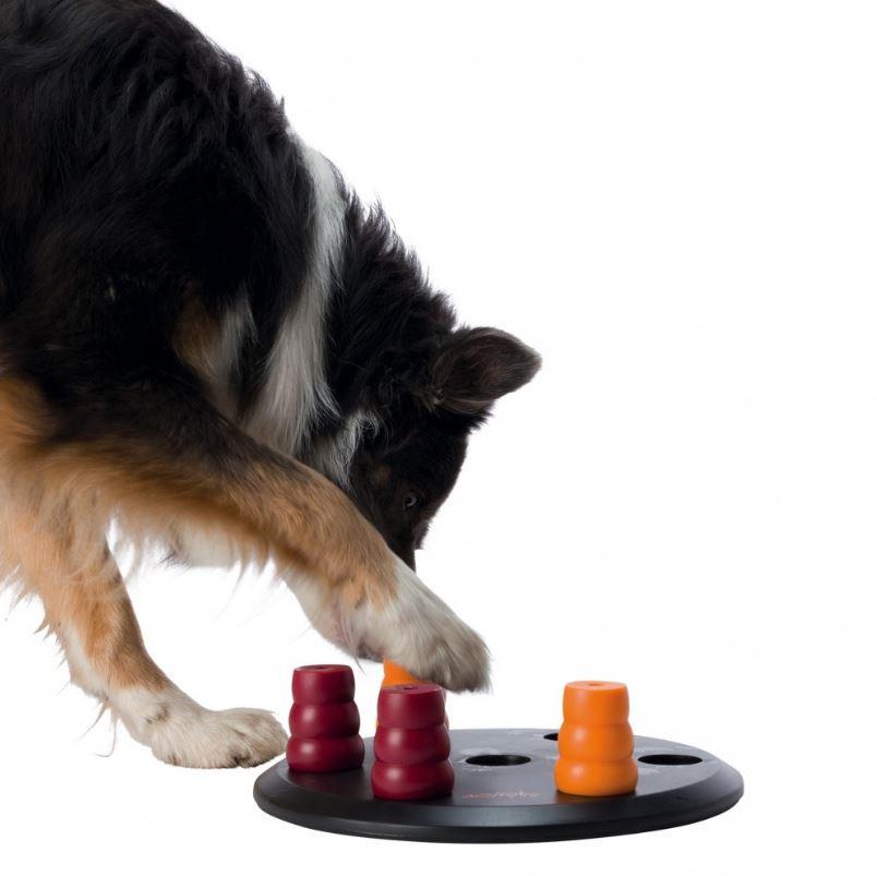 Dog Activity Solitär für Hunde