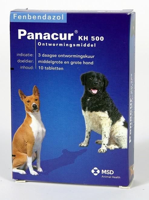 Panacur 500 Entwurmungsmittel für mittelgroße & große Hunde