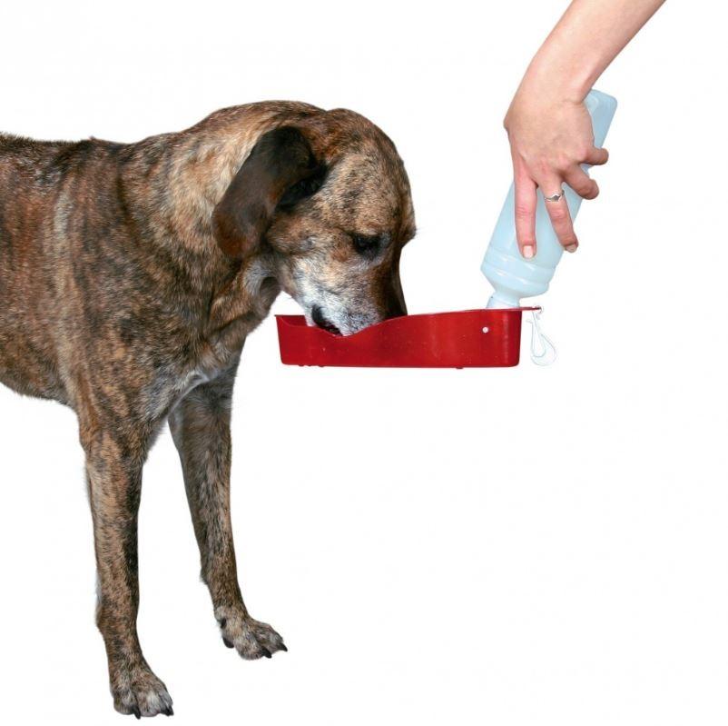 Trinkflasche unterwegs für den Hund