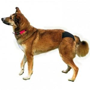 Trixie Schutzhöschen S/M für den Hund