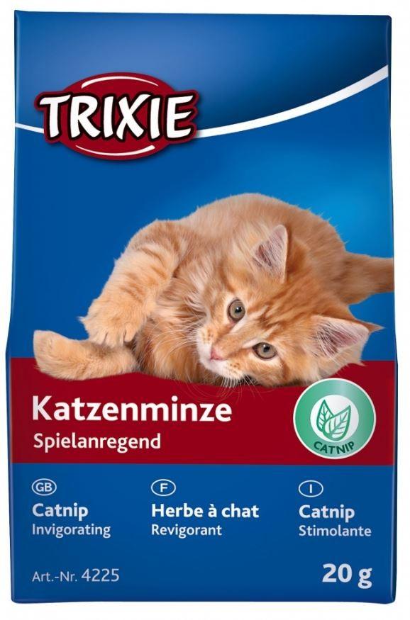 Katzenminze 20 Gramm