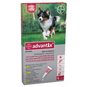 Advantix 250/1250 für Hunde von 10 bis 25 kg