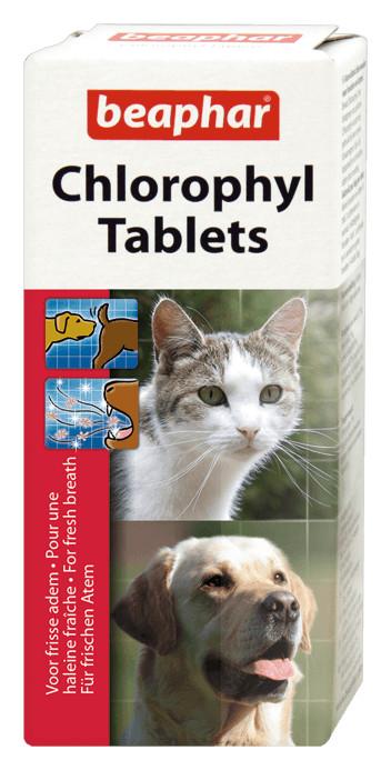Beaphar Chlorophyl für Hund und Katze