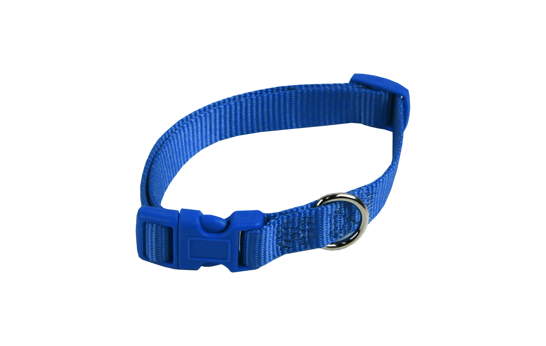 Nylon Hundehalsband Blau