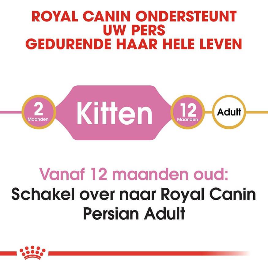 Royal Canin Kitten Perserkatze Katzenfutter