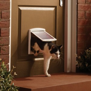 Staywell Original Small Pet Door Klappe
