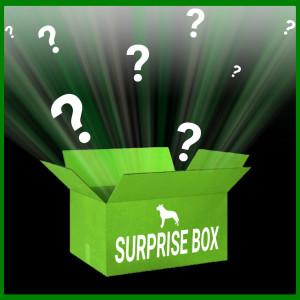 Brekz Überraschungs-Box Limited Edition für Hunde