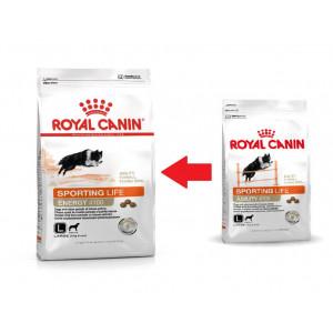 Royal Canin Sporting Agility 4100 Large Dog