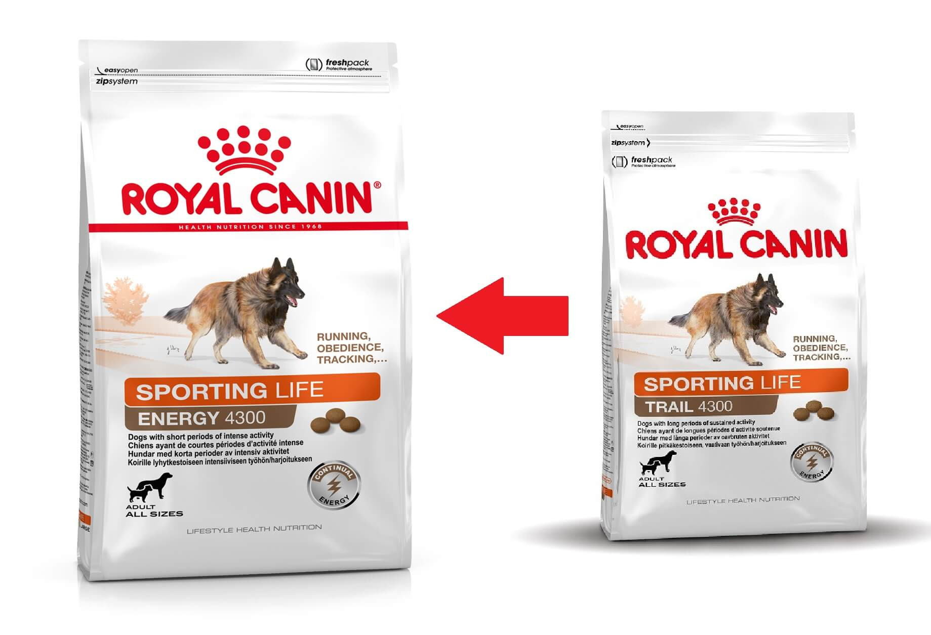 Royal Canin Sporting Life Trail 4300 Hundefutter