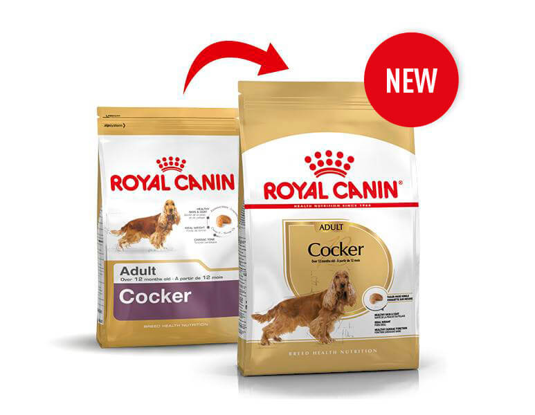 Royal Canin Adult Cocker Spaniel Hundefutter