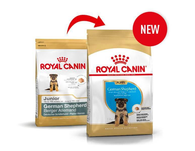 Royal Canin Junior Deutscher Schäferhund Hundefutter