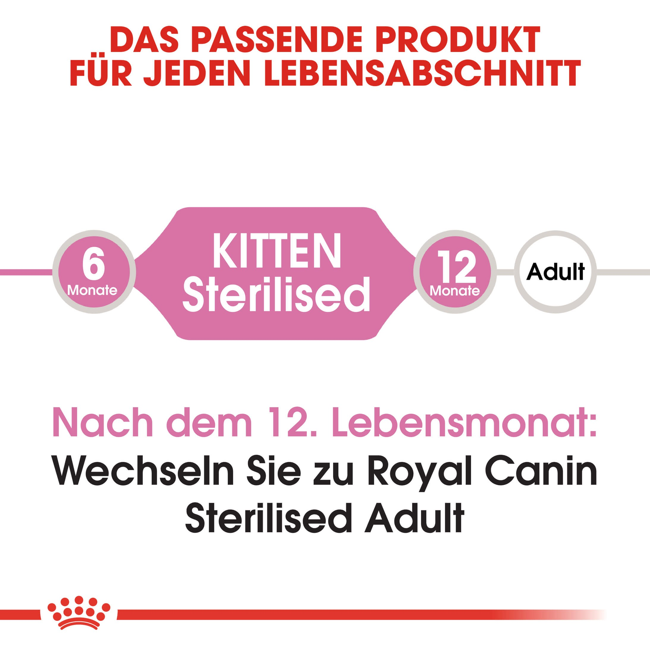 Royal Canin Kitten Sterilised Katzenfutter