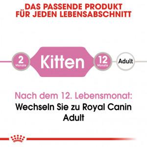 Royal Canin Pouch Kitten Katzenfutter x12