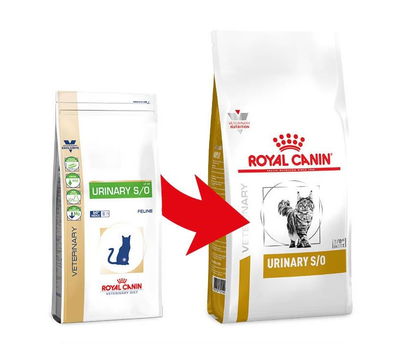 Royal Canin Urinary S/O kattenvoer
