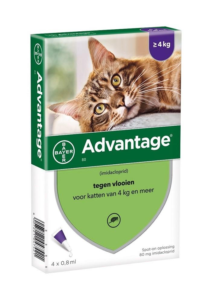 Advantage Nr. 80, Vlooienmiddel voor katten