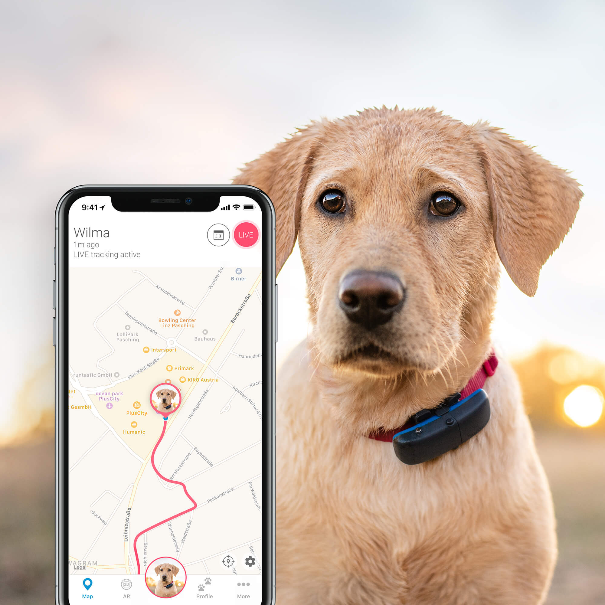 Tractive GPS Dog Tracker