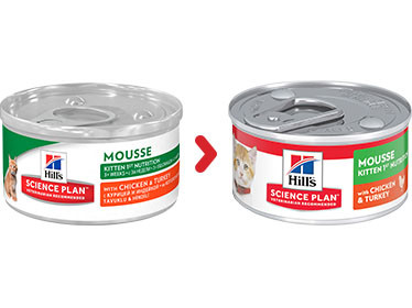 Hill's Kitten 1st Nutrition Mousse Katzenfutter