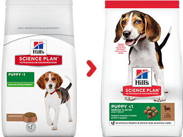 Hill's Puppy Medium Lamm & Reis Hundefutter