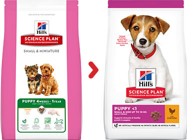 Hill's Puppy Small & Mini Huhn Hundefutter 1,5 kg