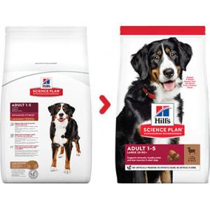 Hill's Adult Large Breed Lamm & Reis Hundefutter