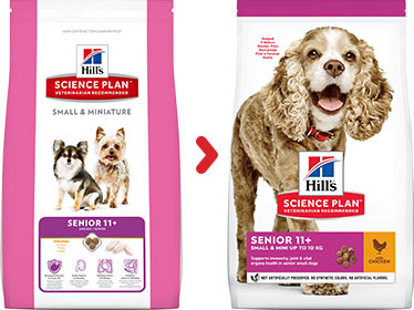 Hill's Senior Small & Mini Huhn Hundefutter