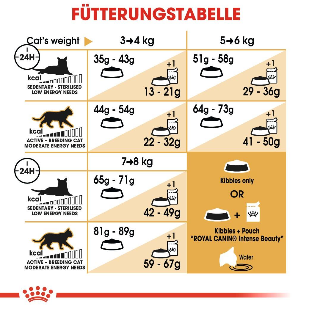 Royal Canin Adult Perserkatze Katzenfutter