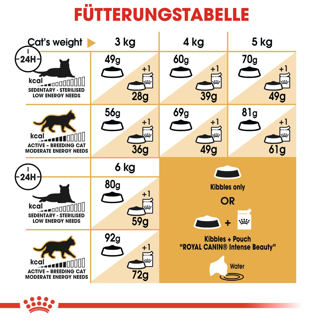 Royal Canin Adult Sphynx Katzenfutter