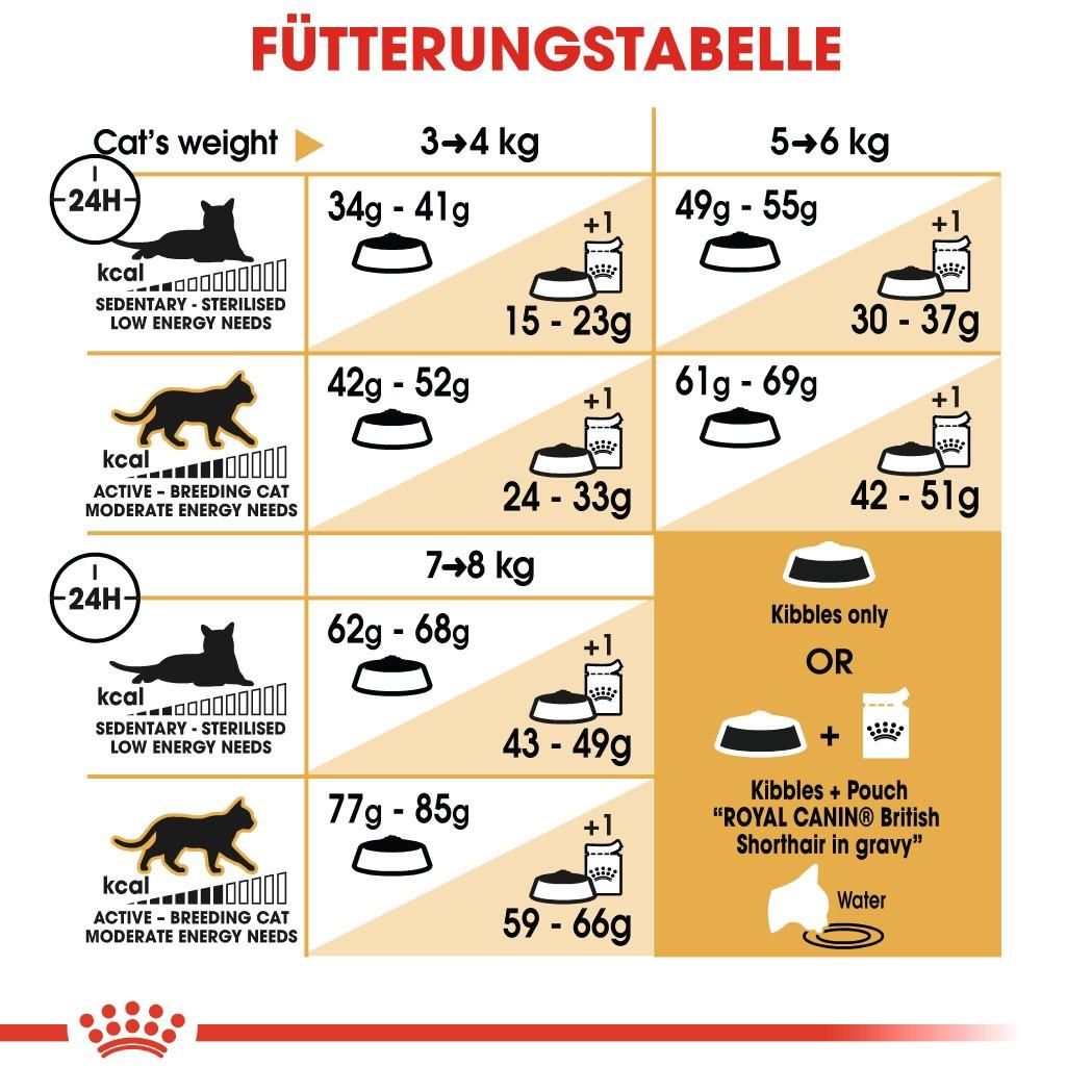 Royal Canin Adult Britisch Kurzhaar Katzenfutter