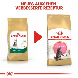 Royal Canin Kitten Maine Coon Katzenfutter
