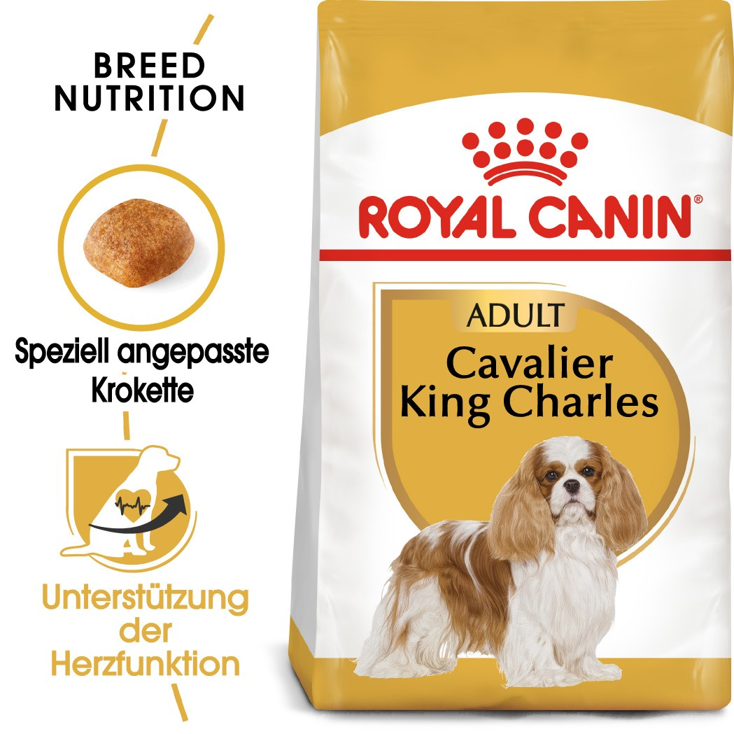 Royal Canin Adult Cavalier King Charles Hundefutter