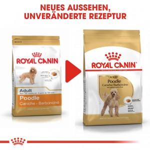 Royal Canin Adult Pudel Hundefutter