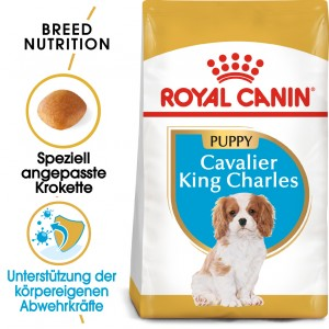 Royal Canin Puppy Cavalier King Charles Hundefutter