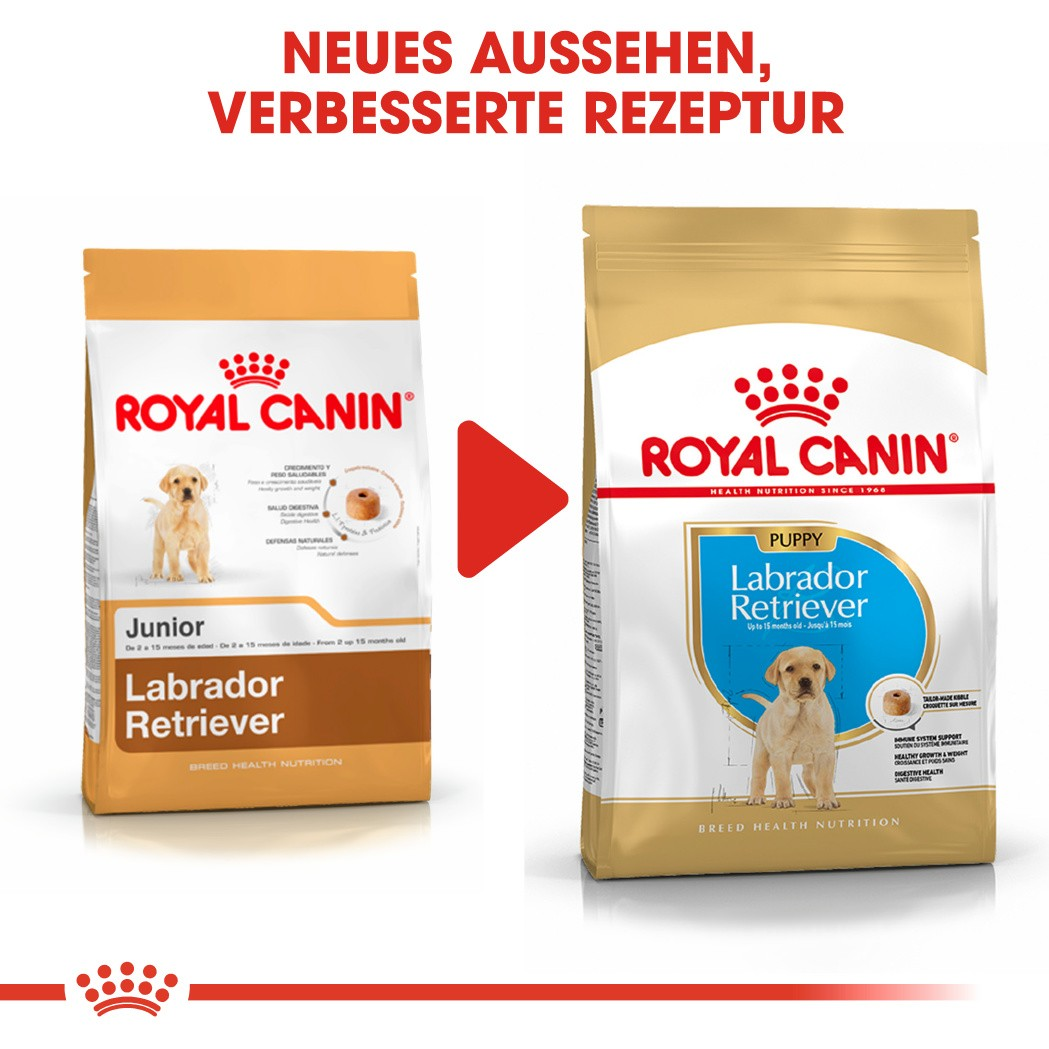 Royal Canin Puppy Labrador Retriever Hundefutter