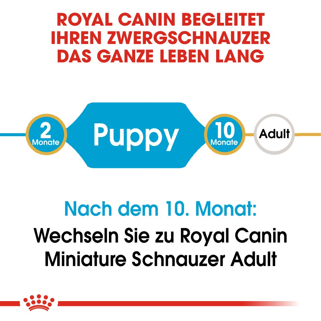 Royal Canin Miniature Schnauzer Junior Hondenvoer