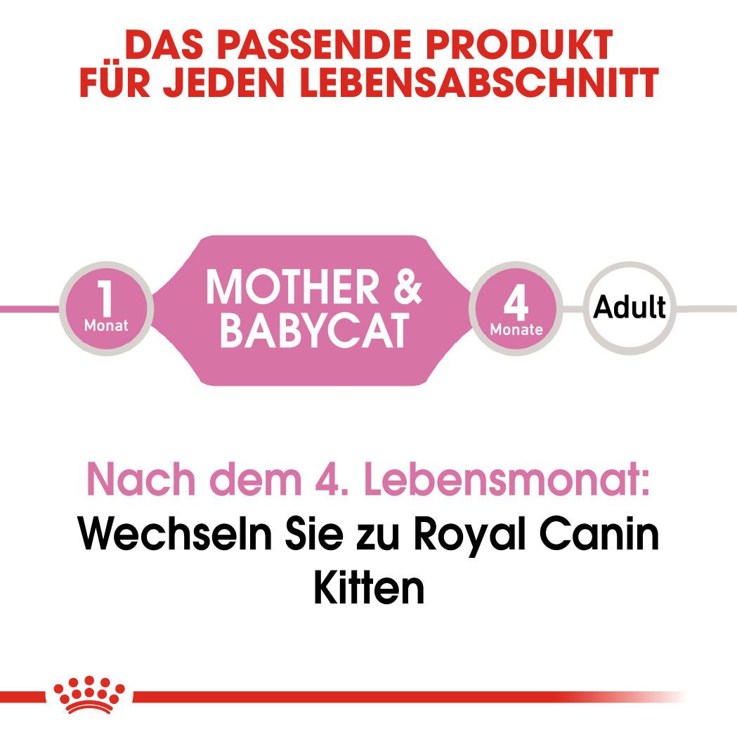 Royal Canin Babycat Instinctive Mousse Katzenfutter