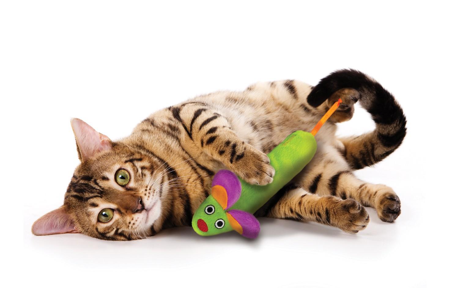 Petstages Green Magic Mighty Mouse für die Katze