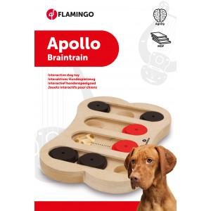 Hondentrainingsspel Brain Train Apollo