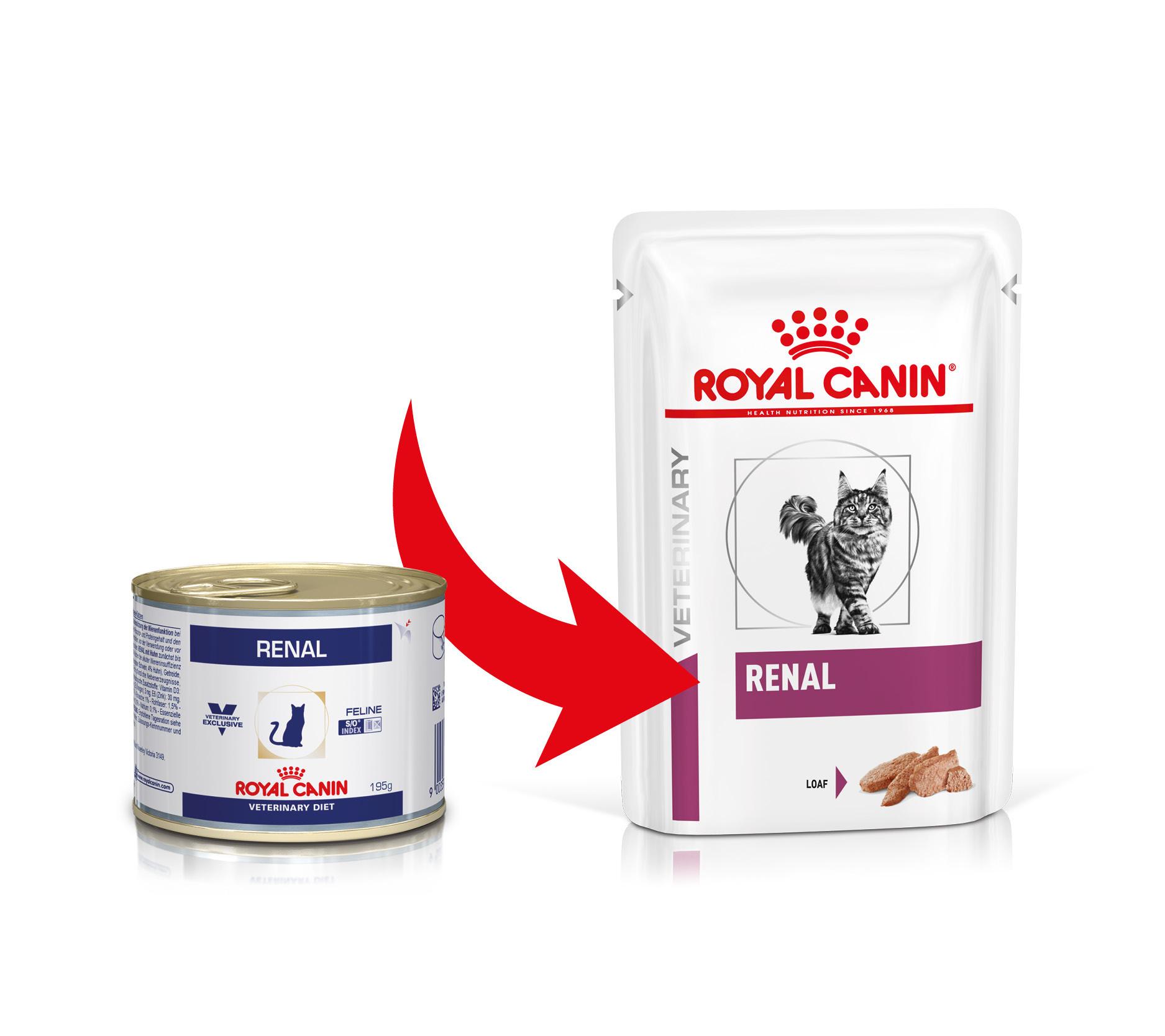Royal Canin Veterinary Diet Renal 195g (in Dosen) Katzenfutter AUSVERKAUF