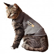 Thundershirt voor katten